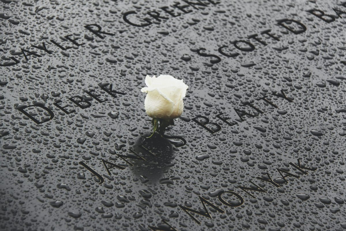 Representative photo of a single white rose on the 9/11 victims' memorial slab | Photo by Ged Lawson on Unsplash